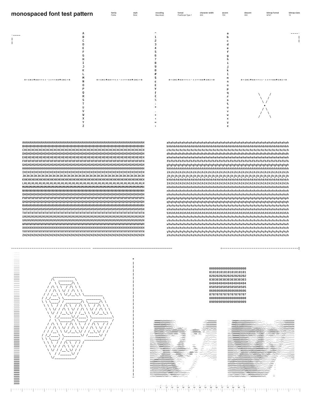 Monospaced Font Test Pattern: Politie Bold